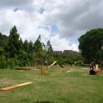 30 Day Snap #9 Domingo de parque